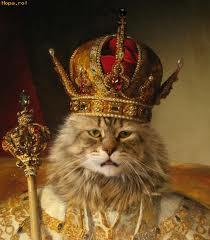 Cat in a crown