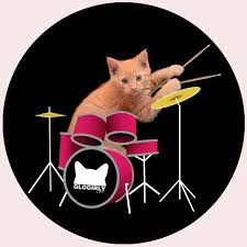 CAT AND DRUM